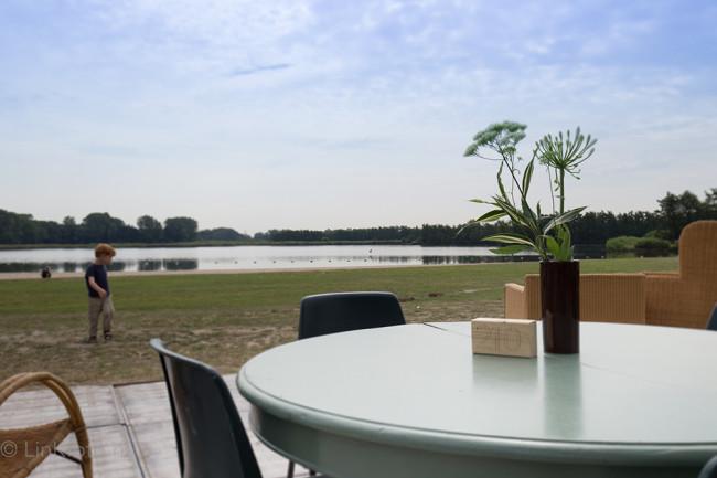 Het-Veerkwartier-Haarlem-29