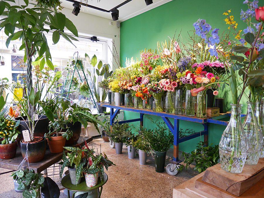 Miss Bloem: bloemen & planten om blij van te worden