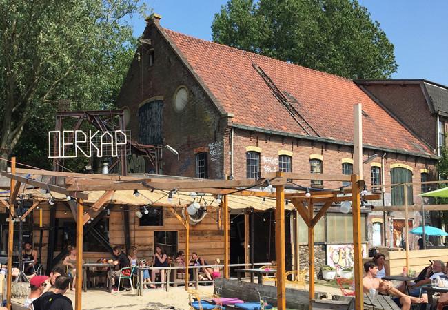 Oerkap-Haarlem-1