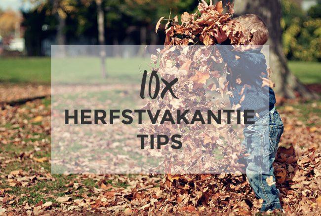 10x Herfstvakantietips Met Kinderen Haarlem City Blog